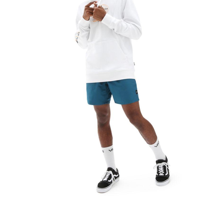 Vans Primary Volley Boardshorts